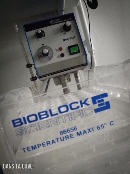 Développement: comment maintenir la température de votre cuve?